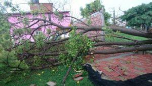 Lluvia dejó severos daños 2