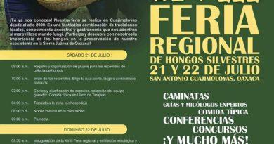 Invitan a la XVIII Feria de los Hongos Silvestres