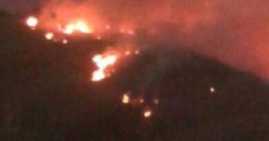 Alerta por incendio forestal en Los Cués